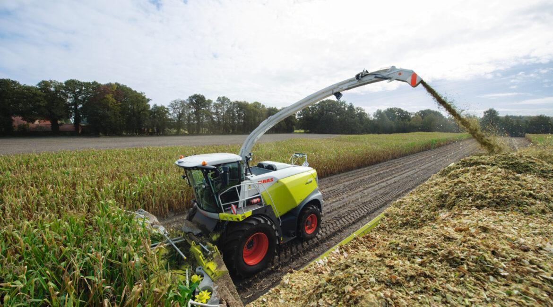 Jak przygotować sieczkarnię do zbioru kukurydzy?